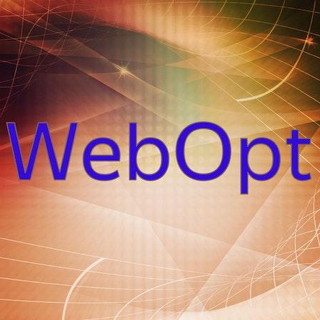 WebOpt - Web Tech