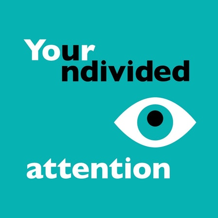 Your Undivided Attention